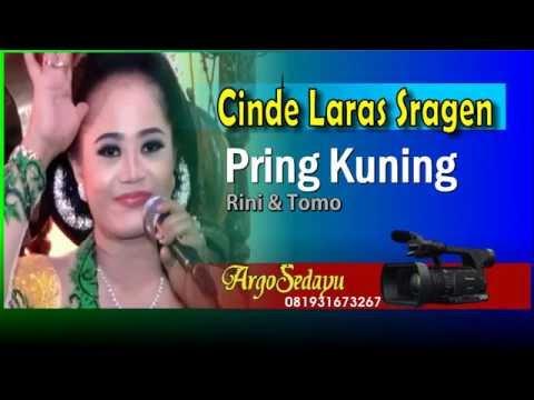 Cinde Laras 2016 PRING KUNING by Rini & Tomo Cokek Mania Sragenan