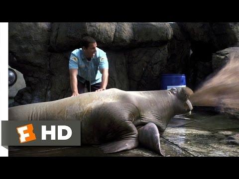 Vomiting Walrus - 50 First Dates (3/8) Movie CLIP (2004) HD