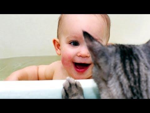 Bebes Y Animales Graciosos Bañándose Juntos - Videos De Risa De Animales