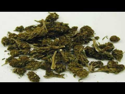 Drug Free World - Real Life Drug Story - The Truth About Marijuana