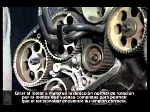 Reemplazo De La Correa De Distribucion Youtube