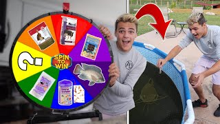 Spin the MYSTERY Wheel & FEED My FISH whatever it Lands on - Challenge