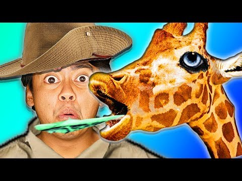 I Tried Being a Zookeeper For a Day