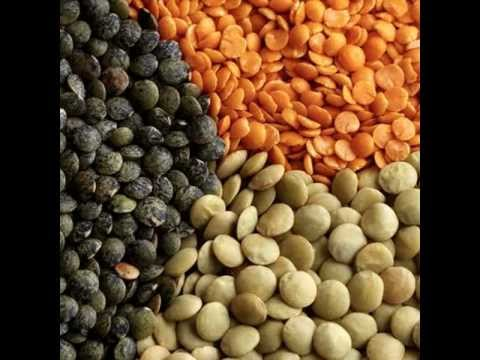 The best diet on the planet - 5 best plant foods for protein