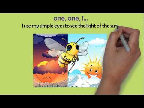 Honeybee's Silly Rhyme Rap Song Video 2 VOL 6 Words & Song