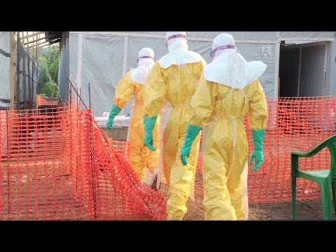 How an Ebola outbreak can start, and end
