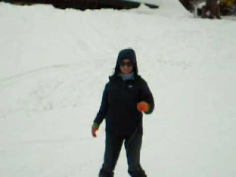 лыжы хохибрик 2008