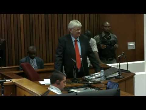 Oscar Pistorius Trial: Friday 9 May 2014, Session 2