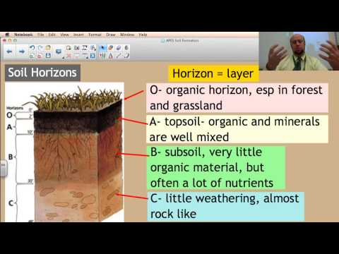 Soil formation facts information pictures encyclopedia for Soil encyclopedia