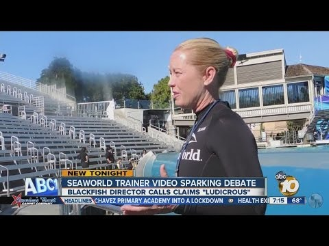 Blackfish director responds to SeaWorld trainer interview