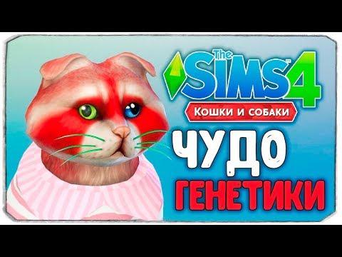ЧУДО ГЕНЕТИКИ, ЕНОТИКИ - The Sims 4 Кошки и Собаки