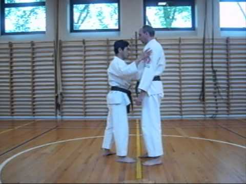 Aikijutsu training 17 Image 1