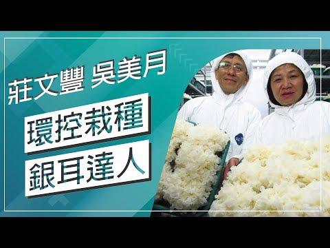 台灣-草地狀元-20180625 1/2 環控栽種銀耳達人