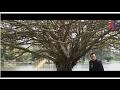 download lagu      Sempurnakan Aku dan Dia - Riz Zaizizi    gratis
