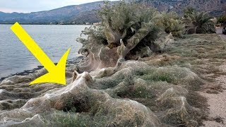 A Town In Greece Awoke To Discover This Eerie 980 Foot Phenomenon Cloaking The Coast