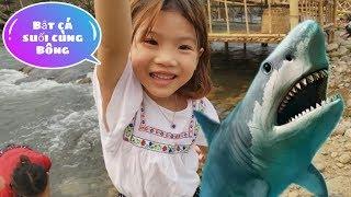 Trò chơi bắt cá suối cùng các bạn | Bông Boong TV |