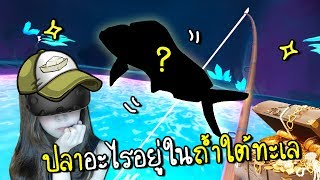 Htc Vive                                             Crazy Fish Zbing Z