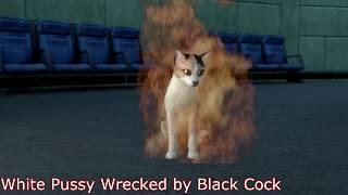 HUGE Black Cock WRECKS HOT White Pussy