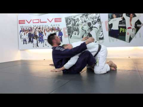 BJJ Guard Passes (Butterfly): technique demonstrated by Dennis Asche Image 1