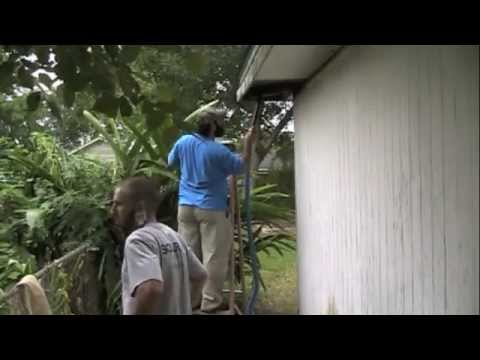 JP And Monkey Man Remove Bees In Kenner, Louisiana - Medium.m4v
