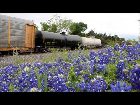 UP Eastbound in bluebonnets at Schulenburg, TX - 4.5.2014