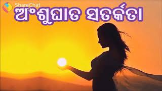 Now odia and Hindi video song HD