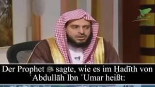 Islam/Die Plicht des Vollbartes Teil 3