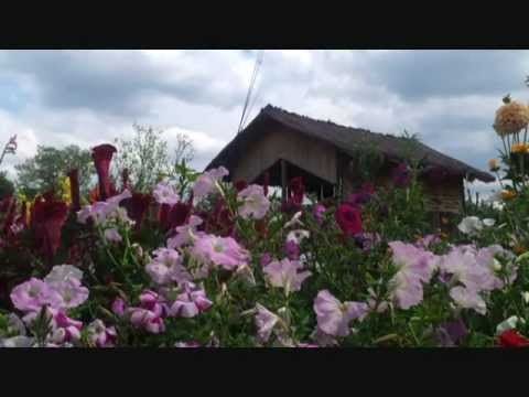 Lipcani for Casa moderna in moldova