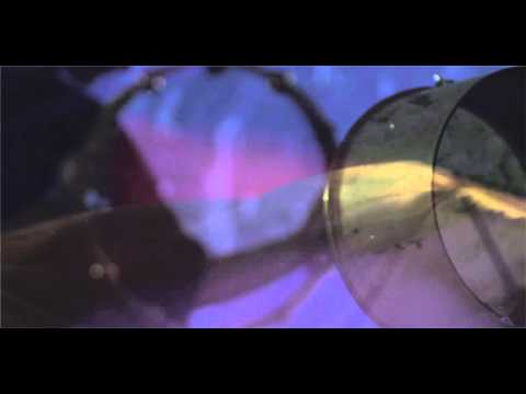 Django Django - Waveforms (Official Video)