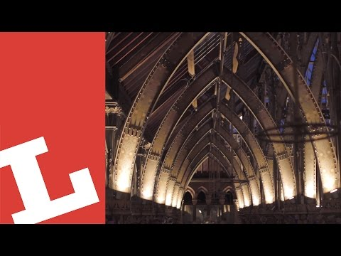 Lux project report: Oxford University Museum of Natural History