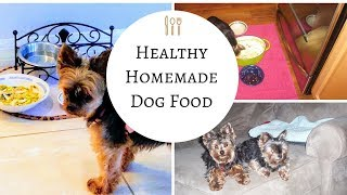 Homemade Dog Food Recipe  Easy To Make Healthy For Dogs