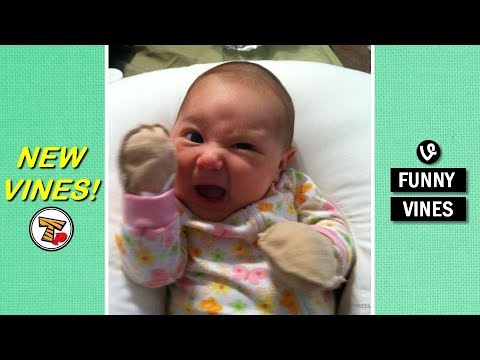 IF these KIDDOS won't make you LAUGH nothing will - FUNNY KIDS COMPILATION - Watch and laugh!