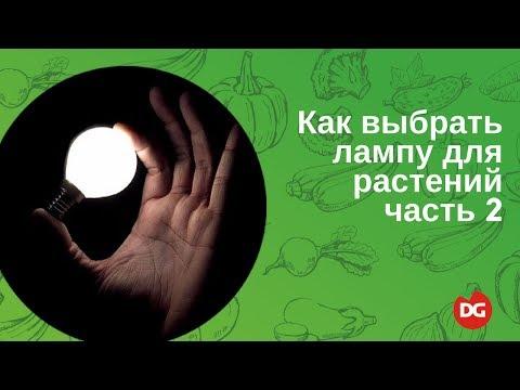 Как выбрать лампу для растений. Часть 2 Music Videos