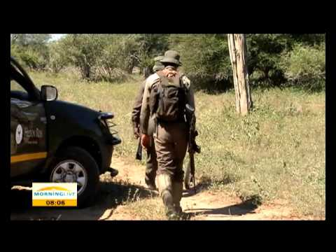 SANParks step up fight against rhino poaching