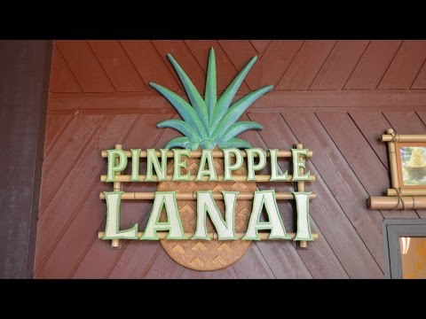 Pineapple Lanai Opens, Serving Dole Whips at Disney's Polynesian Village Resort, Walt Disney World
