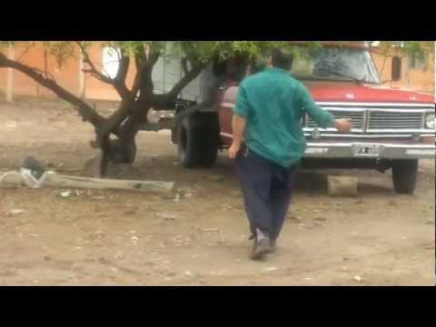 Video: baile del caballo !! 480x360 px - VideoPotato.com