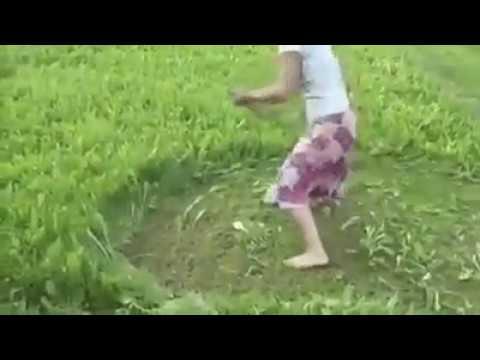 Inilah Alat potong Rumput Tercanggih di dunia!