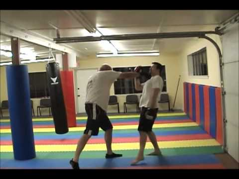 Cover & Hit -Jun Fan Style Combatives Image 1