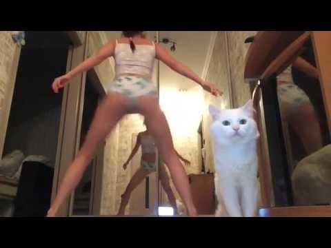 TWERK / BOOTY DANCE/ КОТОTWERK