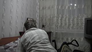 [Spider Prank] Video