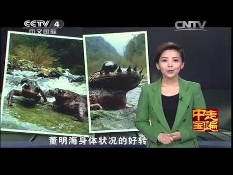 中國-走遍中國-20140509 千奇百怪的水中精靈