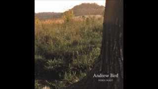 Watch Andrew Bird Not A Robot But A Ghost video