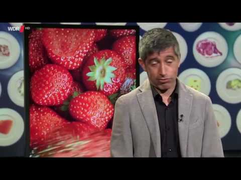Youtube kacke: Ranga Yogeshwar Ernährung