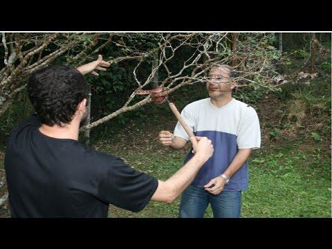 Clique e veja o vídeo Criação de Serpentes - Manejo