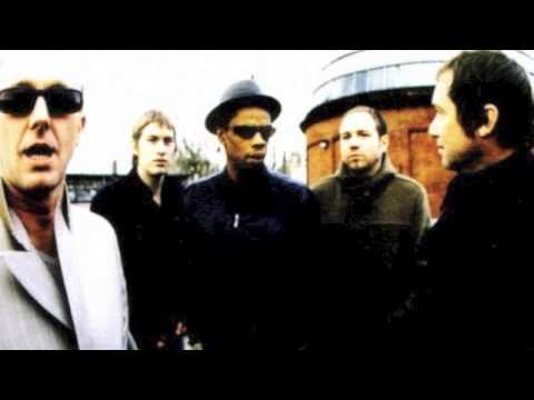 Ocean Colour Scene - Daylight