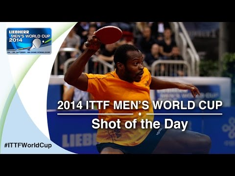 2014 Men's World Cup - Shot of Day 2