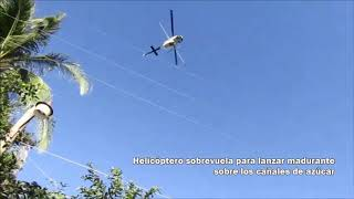 Helicopter spraying in San Vicente