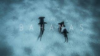 The Blue Film  [The Bahamas]