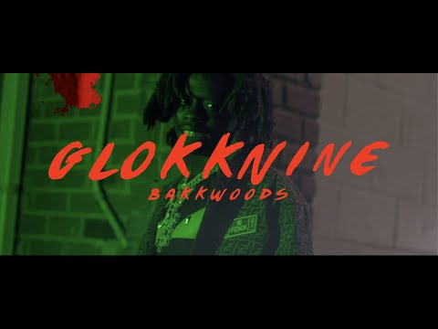 9lokknine- Bakkwoods (Official Music Video)
