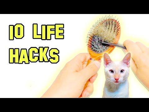 ✔ 10 Life Hacks That Make Life Easier